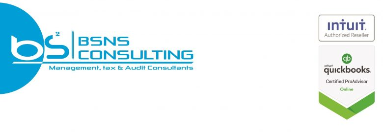 BSNS CONSULTING